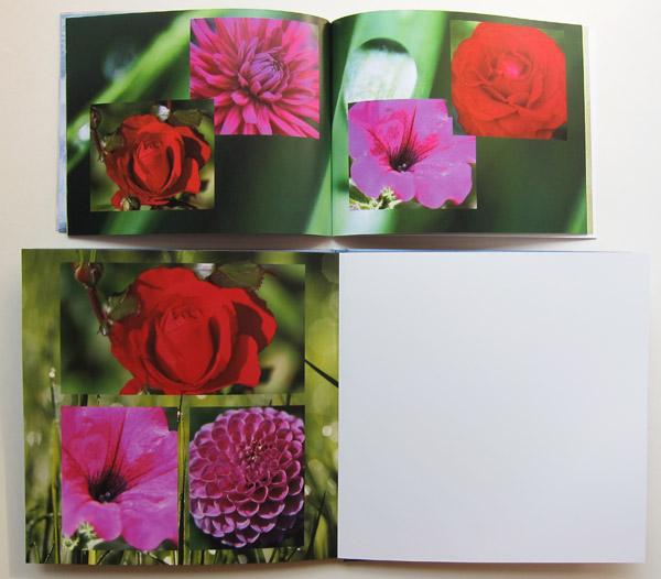 Oben das Fotobuch mit normalem Papier - Unten das Fotobuch mit Fotopapier