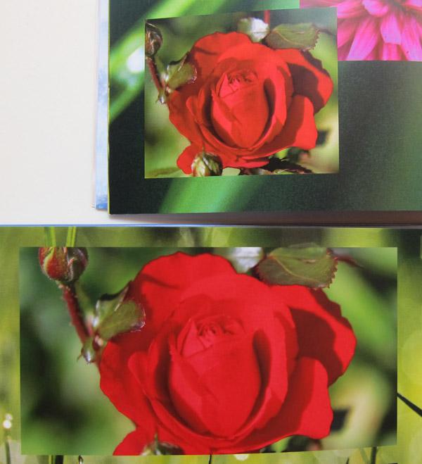 Oben das Bild auf normalem Papier - Unten auf Fotopapier