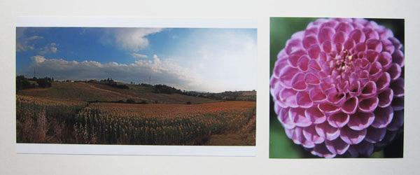 Zu extreme Panoramafotos werden mit weißem Balken oben und unten gedruckt