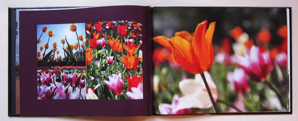 Die Position der Bilder kann nur mit großen Umständen individuell bestimmt werden.