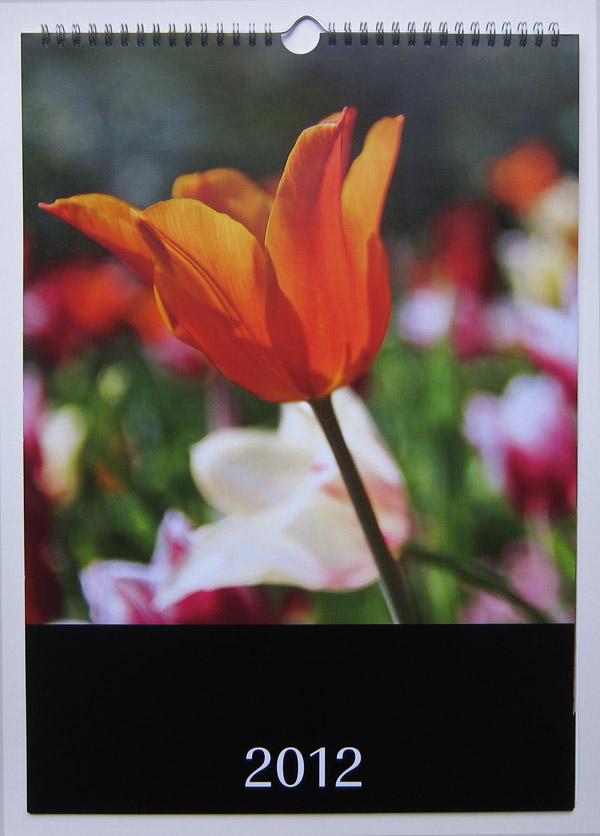 Der Fotowandkalender von Pixum (Titelblatt)